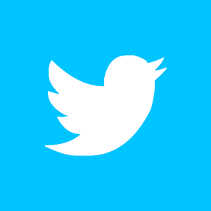 Twitter - pixabay